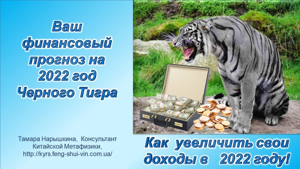 Фэн Шуй 2022 года Черного Тигра