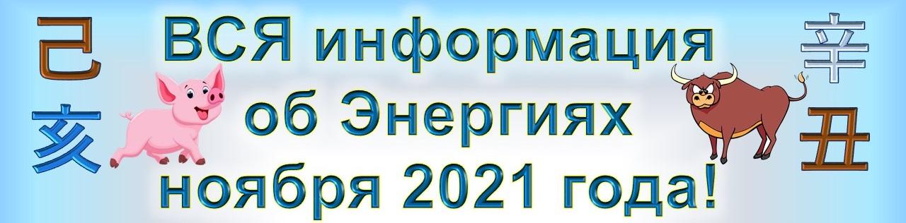 Фэн Шуй ноября 2021г